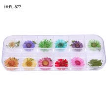 -12 Lattices Dried Flower Nail Polish Art Tip Decal Manicure Handcraft DIY Tool on JD