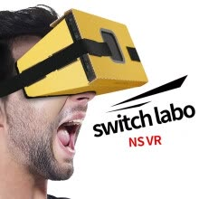 -Folding Cardboard Board For Switch NS LABO Glasses Carton Game on JD