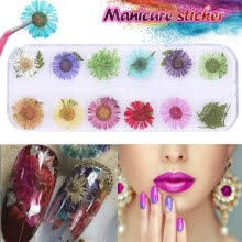 -12 Colors 3D Decoration Real Dry Dried Flower For UV Gel Acrylic Nail Art Tips on JD