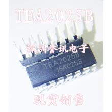 -TEA2025B TEA2025  DIP on JD